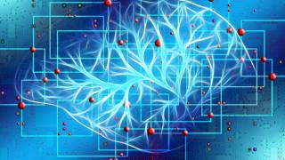 Η τεχνητή νοημοσύνη που μιμείται τον εγκέφαλο βρίσκοντας τον δρόμο σε εικονικούς λαβύρινθους