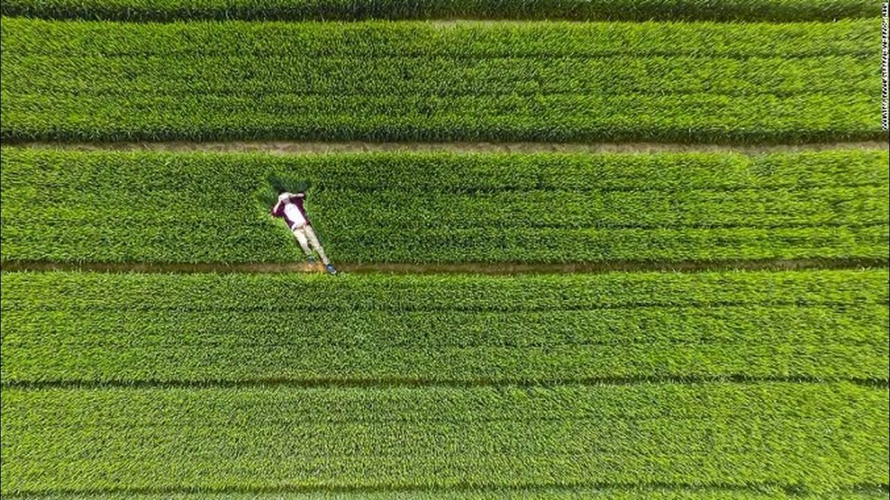 https://cdn.cnngreece.gr/media/news/2018/05/10/129440/photos/snapshot/151013112914-dronestagram-grass-china-super-169.jpg