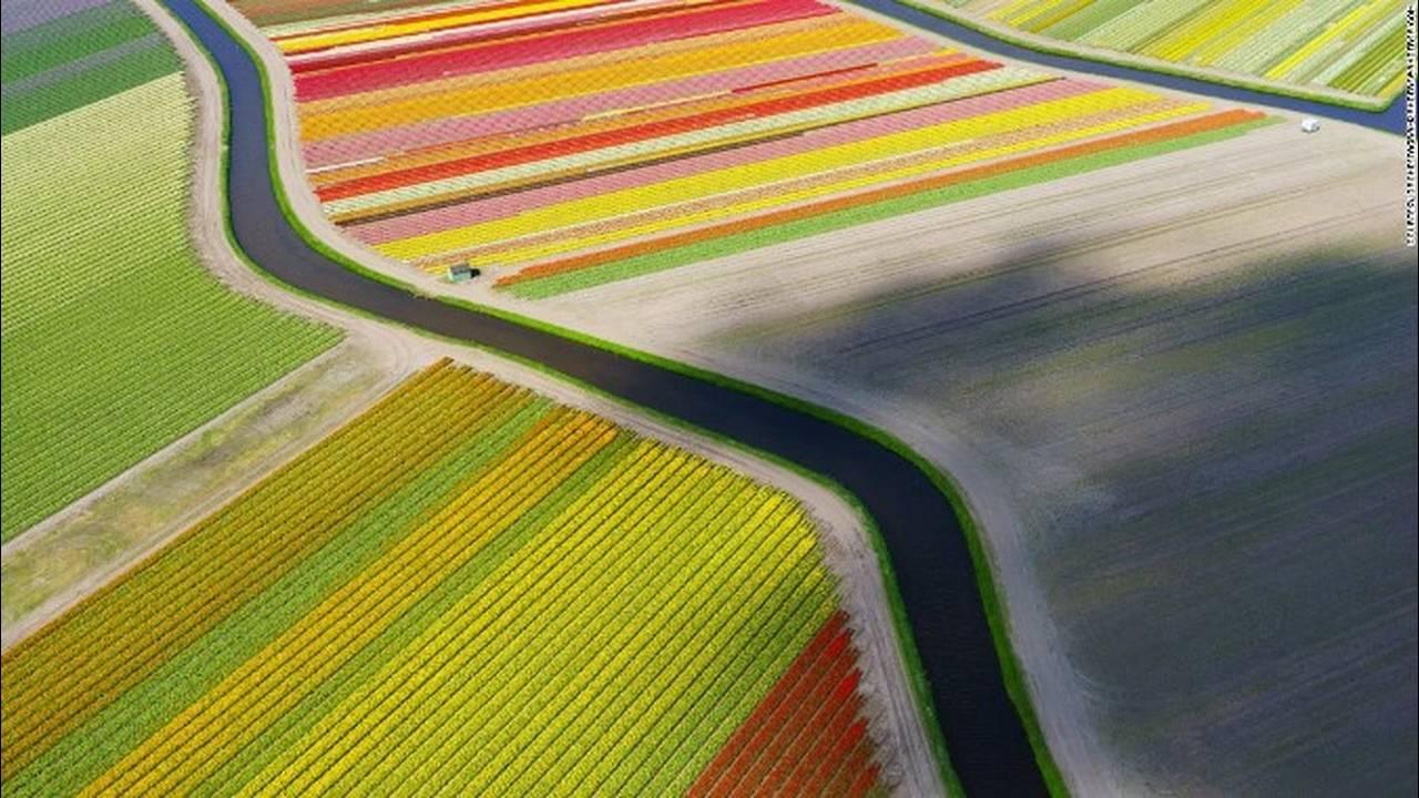 https://cdn.cnngreece.gr/media/news/2018/05/10/129440/photos/snapshot/151013162248-dronestagram-tulip-field-super-169.jpg