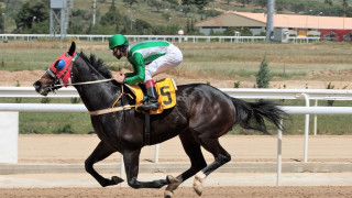«Ραντεβού» στο Μαρκόπουλο με επτά ιπποδρομίες και έντονη αγωνιστική δράση