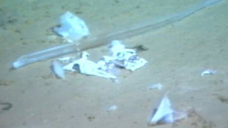 Μία πλαστική σακούλα στο βρέθηκε στο βαθύτερο σημείο των ωκεανών...