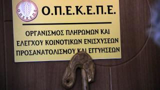 ΟΠΕΚΕΠΕ: Ξεκίνησε η πίστωση συνδεδεμένων ενισχύσεων στους λογαριασμούς των δικαιούχων