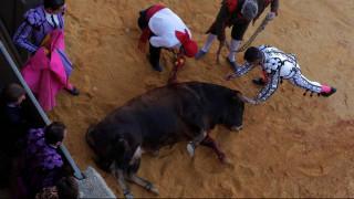Ισπανία: Ταύρος βασανίζεται κατά τη διάρκεια φεστιβάλ