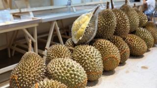 Ντούριαν: Το… δύσοσμο φρούτο που κερδίζει όλο και περισσότερους Κινέζους καταναλωτές