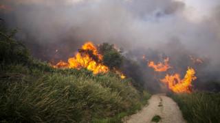 Καλύτερη η εικόνα της πυρκαγιάς στην Κύμη