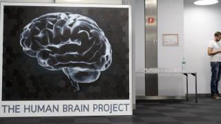 Έλληνας ερευνητής «φωτίζει» τους νευρώνες της επιθετικής συμπεριφοράς