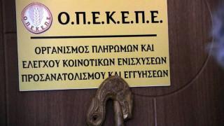 ΟΠΕΚΕΠΕ: Μέχρι τις 13 Ιουνίου οι ενστάσεις για την πρώτη εκκαθάριση στο «Κομφούζιο»