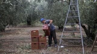 Έξι «αντάρτες» στο σχέδιο της Ε.Ε για περικοπές στις αγροτικές ενισχύσεις