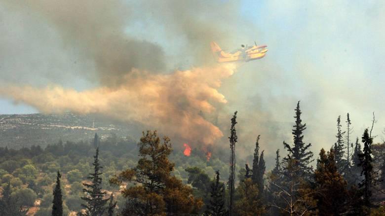 Μεγάλη φωτιά στο Άλσος Συγγρού