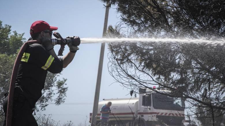 Καλύτερη η εικόνα της φωτιάς στο Άλσος Συγγρού