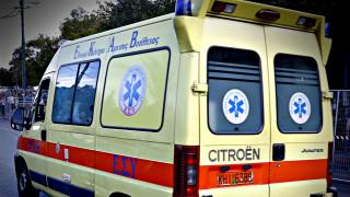 Τροχαίο στον Πύργο: Άλογο έπεσε σε αυτοκίνητο, τραυματίστηκε η έγκυος οδηγός