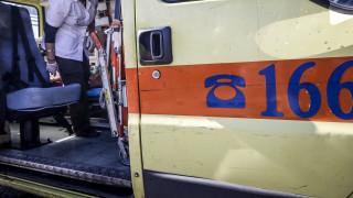 Ναύπακτος: Σκύλος δάγκωσε βρέφος 10 μηνών στο πρόσωπο