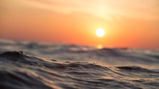Παγκόσμια Ημέρα Ωκεανών: Σε κίνδυνο οι πνεύμονες του πλανήτη μας