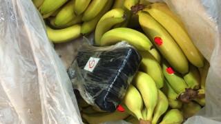 Έκρυβαν 41,5 κιλά κοκαΐνης σε φορτίο με μπανάνες από το Εκουαδόρ