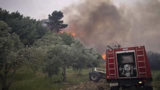 Δήμαρχος Πύλου-Νέστορος: Το πύρινο μέτωπο πλησίασε τις παρυφές της πόλης