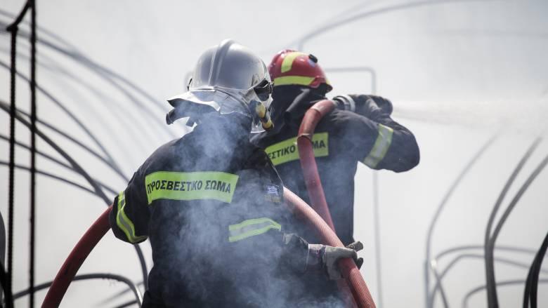 Υπό μερικό έλεγχο η φωτιά στη Βοιωτία