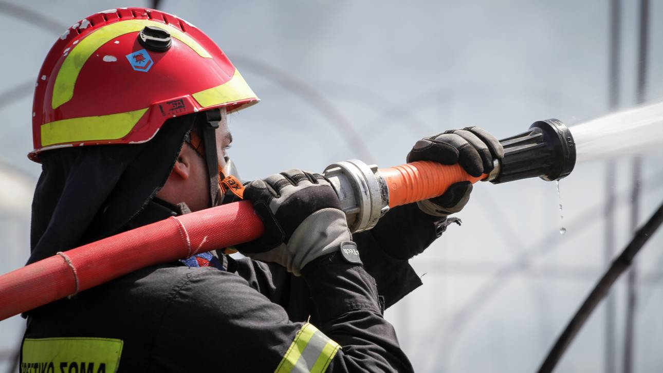 Πυρκαγιά σε δασική έκταση στην Ασωπία Βοιωτίας