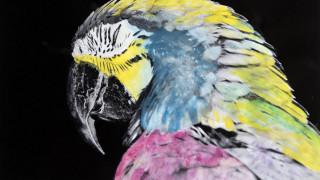 Athens Photo Festival 2018: με 80 καλλιτέχνες από όλο τον κόσμο μας ανοίγει τα μάτια