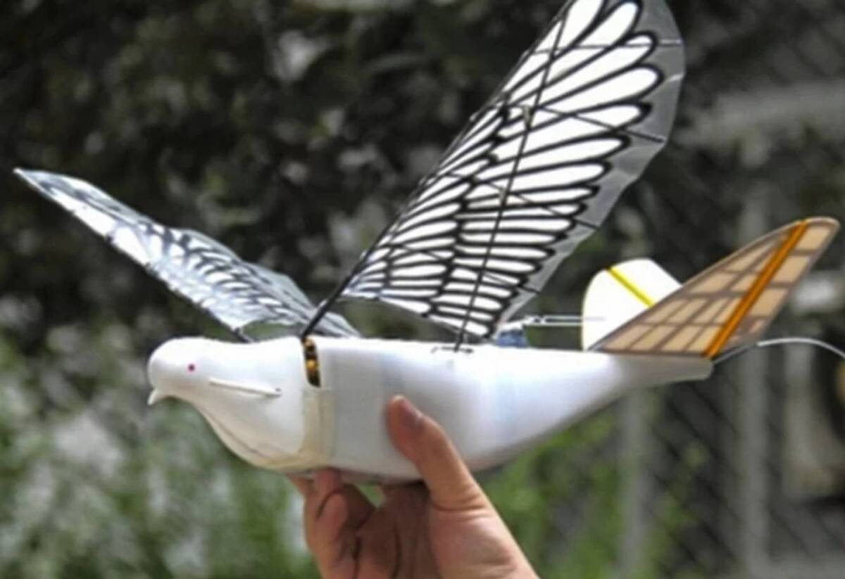 drone surveillance china spy bird