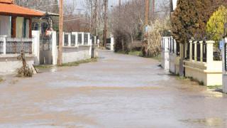Στο έλεος της κακοκαιρίας η Χαλκιδική: Πλημμύρισαν σπίτια, «ποτάμια» οι δρόμοι