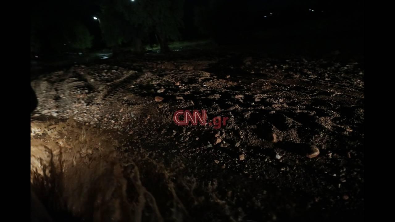 https://cdn.cnngreece.gr/media/news/2018/06/26/136206/photos/snapshot/4796522368_LP2_1772.jpg