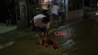 Μάνδρα: «Βούλιαξαν» στη λάσπη δρόμοι και σπίτια