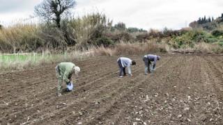 Ενεργοποιήθηκε η πλατφόρμα του Εξωδικαστικού για τους αγρότες