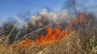 Πυρκαγιά στην περιοχή Βατήσι Καρύστου