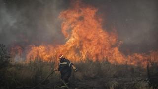Δύσκολη μάχη με τις φλόγες στην Σπίνα Χανίων - Υπό μερικό έλεγχο η φωτιά στον Μυλοπόταμο