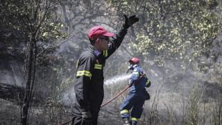 Υπό μερικό έλεγχο η φωτιά στην Σπίνα Χανίων