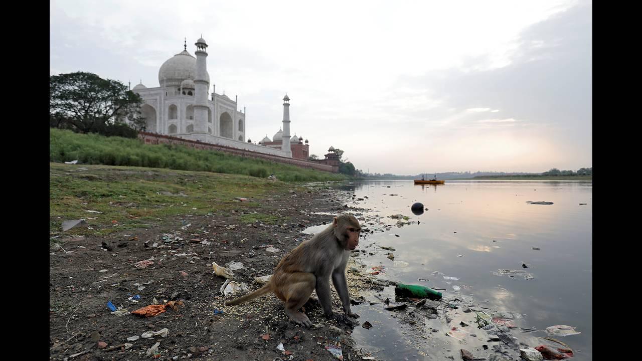 https://cdn.cnngreece.gr/media/news/2018/07/11/138318/photos/snapshot/2018-05-22T003213Z_54561254_RC113CBD18D0_RTRMADP_3_HEALTH-POLLUTION-INDIA-TAJMAHAL.jpg