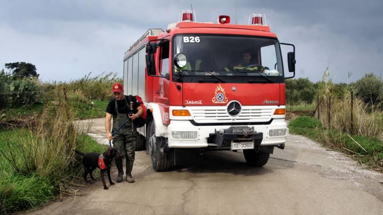 Πολιτική Προστασία: Ποιες περιοχές θα βρεθούν αύριο στο... κόκκινο για κίνδυνο πυρκαγιάς