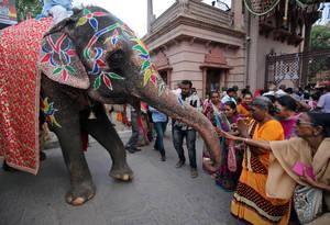 Οι ινδουιστές αγγίζουν έναν ελέφαντα για να αναζητήσουν ευλογία έξω από τον ναό Jagannath την παραμονή μίας ετήσιας λιτανείας στο Ahmedabad της Ινδίας στις 13 Ιουλίου 2018.