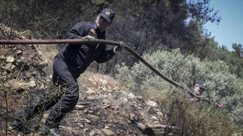 Σε ύφεση οι πυρκαγιές σε Ηράκλειο, Λασίθι και Ρέθυμνο