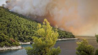 Συνεχίζεται η φωτιά στη Σκόπελο – Στάχτη χιλιάδες στρέμματα πευκοδάσους