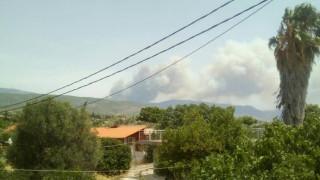 Πυρκαγιά στη Δυτική Αττική - Στις φλόγες τα Γεράνεια Όρη