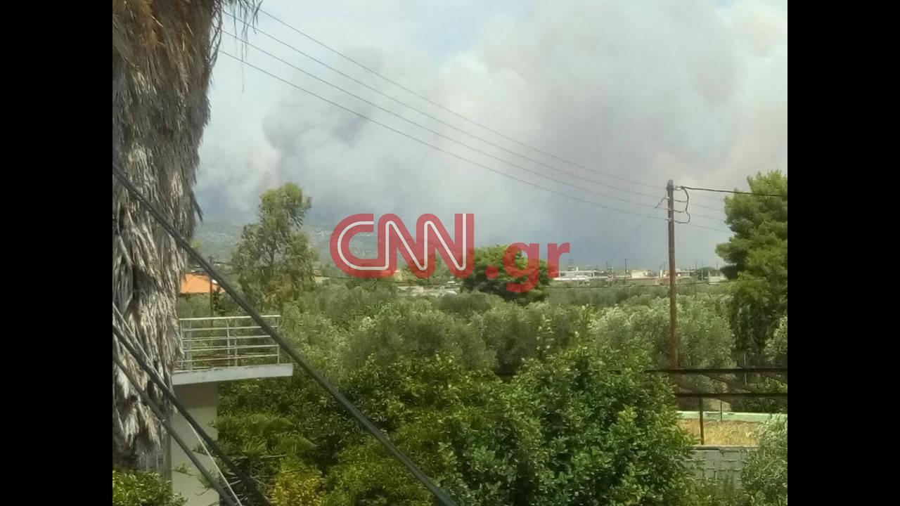 https://cdn.cnngreece.gr/media/news/2018/07/23/139774/photos/snapshot/37641155_1851934851538323_8449957093812731904_n.jpg