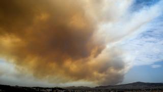 Φωτιά Κινέτα: Στις αυλές των σπιτιών έφτασαν οι φλόγες