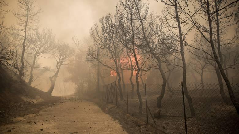 Δήμαρχος Μεγαρέων στο CNN Greece: Η φωτιά είναι εκτός ελέγχου, κινδυνεύουν σπίτια