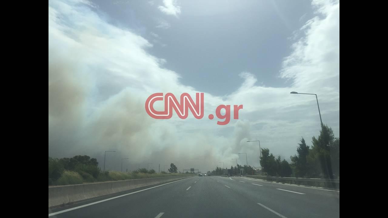 https://cdn.cnngreece.gr/media/news/2018/07/23/139785/photos/snapshot/IMG_4037.JPG