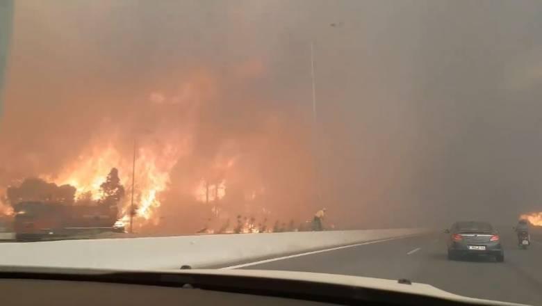 Φωτιά Κινέτα: Οι φλόγες έφτασαν στην Εθνική Οδό