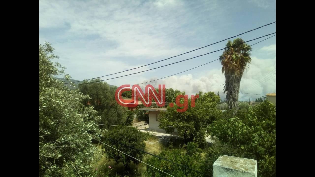 https://cdn.cnngreece.gr/media/news/2018/07/23/139791/photos/snapshot/37677297_1851934171538391_2558980770957885440_n.jpg