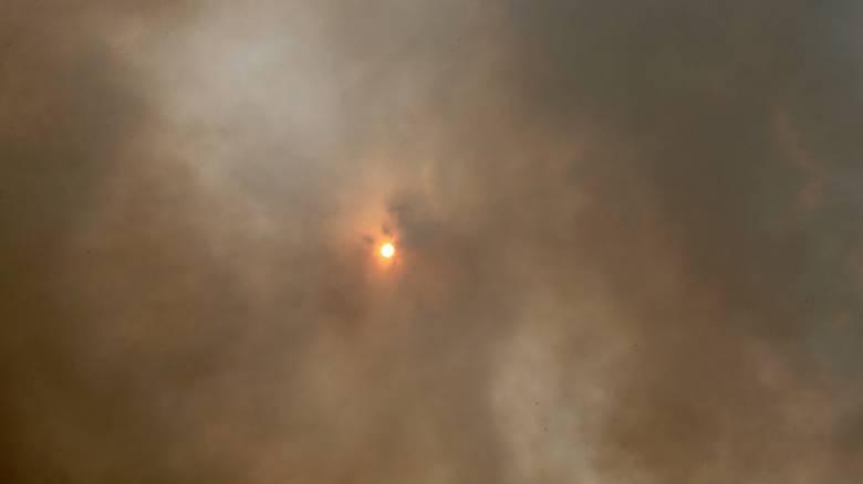 Φωτιά Κινέτα: Μία από τις πιο δύσκολες πυρκαγιές, λέει ο Γ.Γ. Πολιτικής Προστασίας