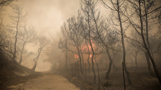 Φωτιά Κινέτα: Δίνουμε σκληρή μάχη, λέει η εκπρόσωπος της Πυροσβεστικής