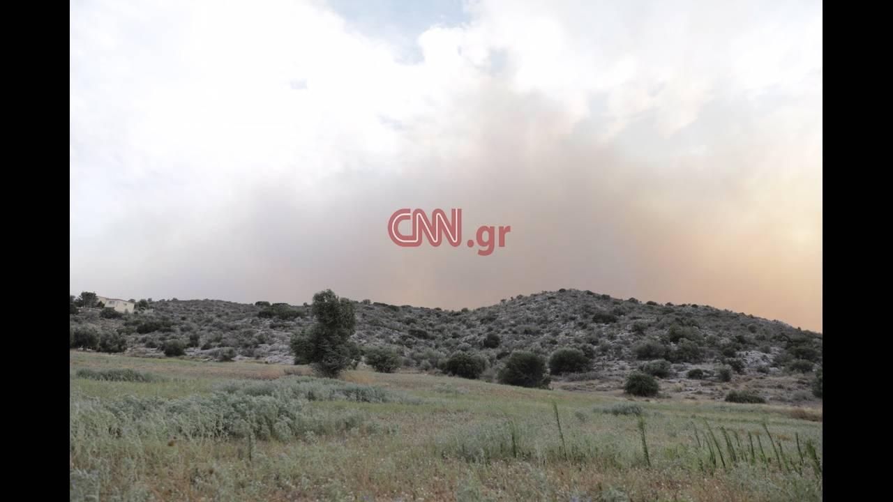 https://cdn.cnngreece.gr/media/news/2018/07/23/139827/photos/snapshot/4824601440_LP2_3454.JPG
