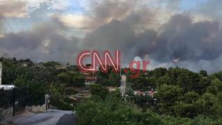 Καταστροφική η πυρκαγιά στην Καλλιτεχνούπολη: Εκκενώνονται κατασκηνώσεις