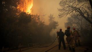 Φωτιά Κινέτα: Βίντεο από την προσαγωγή ύποπτου για τη μεγάλη καταστροφική πυρκαγιά