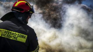 Φωτιά σε πευκοδάσος του δήμου Σουφλίου