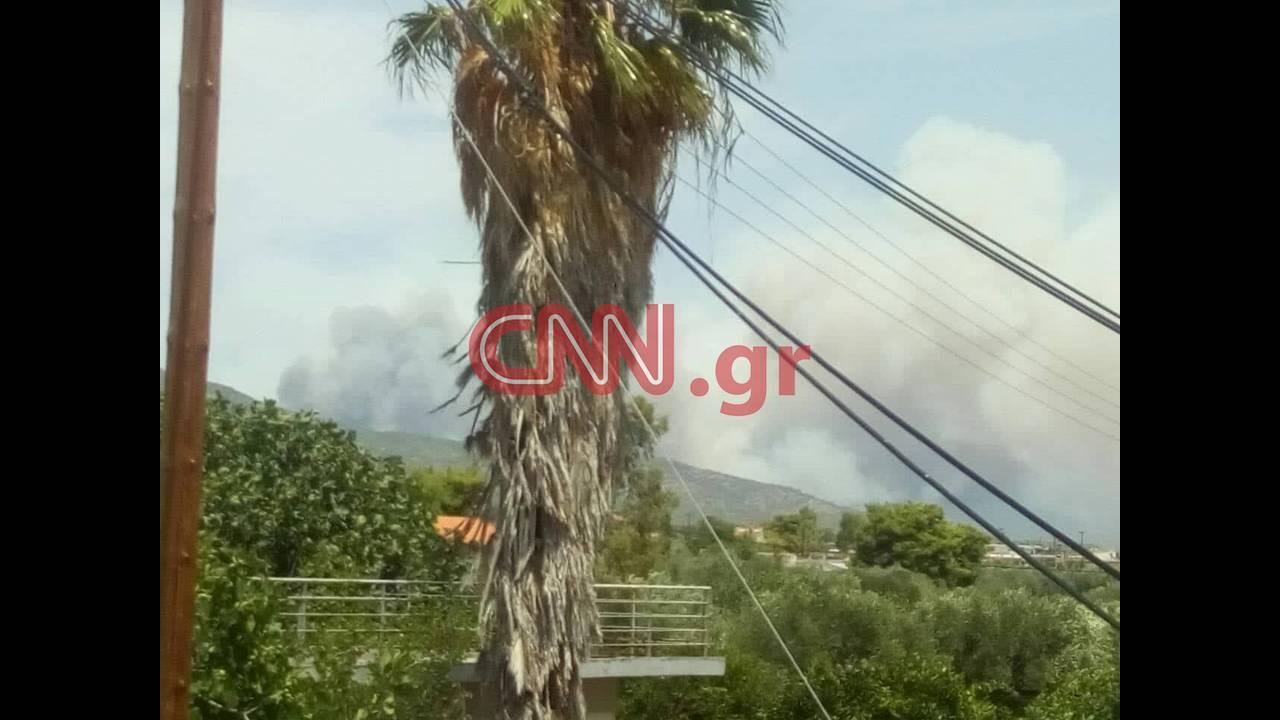 https://cdn.cnngreece.gr/media/news/2018/07/23/139869/photos/snapshot/37647972_1851933371538471_1204845447307329536_n.jpg
