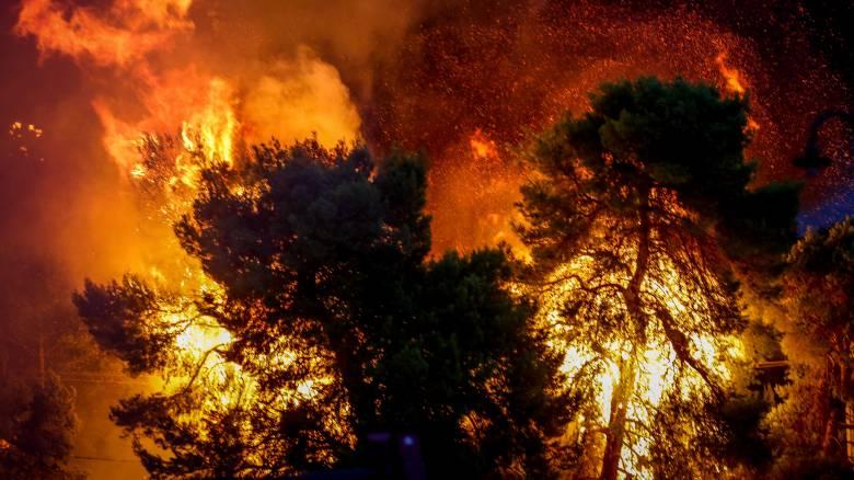 Φωτιά Νέος Βουτζάς: Ένας νεκρός, πολλοί τραυματίες